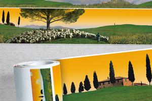 Panorama Borten